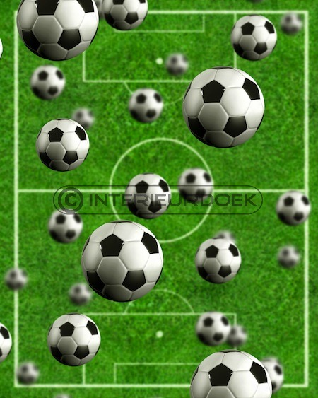 Voetbal [1019] - Producten  Interieurdoek - Canvas schilderijen
